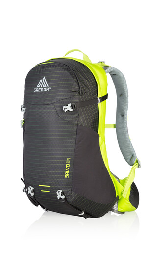 Gregory Salvo 24 Backpack black/macaw green